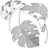 Dirigez les feuilles tropicales dans un style d'aquarelle d'isolement Illustration de Vecteur