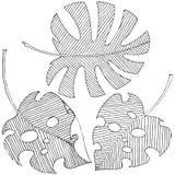 Dirigez les feuilles tropicales dans un style d'aquarelle d'isolement Illustration Libre de Droits