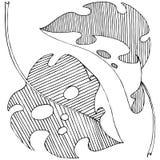 Dirigez les feuilles tropicales dans un style d'aquarelle d'isolement Illustration Stock