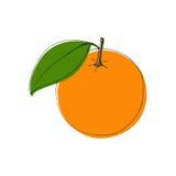Dirigez les fruits oranges tirés par la main dans le style de vintage, éléments d'isolement de conception illustration de vecteur