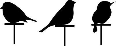 Dirigez les silhouettes d'images de 3 oiseaux, placez la silhouette d'isolement illustration de vecteur