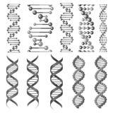 Dirigez les symboles de l'hélice d'ADN ou de la chaîne moléculaire illustration libre de droits