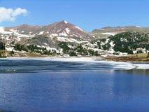 Dirigindo acima da passagem de Beartooth, Montana Imagens de Stock Royalty Free