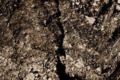 Dirt. Dry cracked dirt background texture stock photos