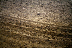 Dirt. With a vehicle track running through it Stock Photography