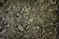Dirt. Background texture Stock Image