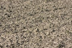 Dirt. Texture of  dirt on field Stock Photo