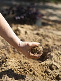 Dirt Royalty Free Stock Photo