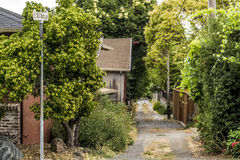 Dirt Alley in Northern California Stock Photo