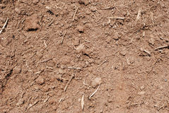Dirt Background. Closeup of dirt for background use stock photos