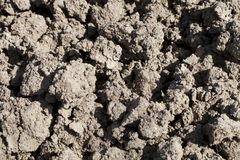 Dirt background texture. Soil prepared for cultivation stock photography