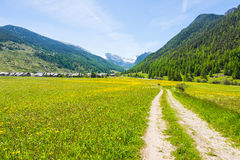 Dirt country road crossing flowery meadows, mountains and forest in scenic alpine landscape and moody sky. Summer adventure and