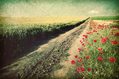 Dirt Country Road - Vintage Image Stock Photography