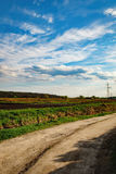 Dirt curving road on green fields under blue cloudy sky. Rural landscape Stock Image