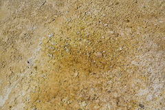 Dirt Detail Royalty Free Stock Photography