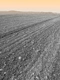 Dirt field Stock Photography