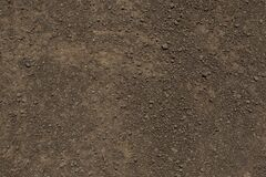 Free Dirt Floor Texture With Pebbles Royalty Free Stock Photos - 179687358