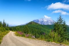 Mt. St. Helens Gifford Pinchot National Forest royalty free stock image