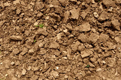 Dirt ground fresh plowed. Texture royalty free stock image