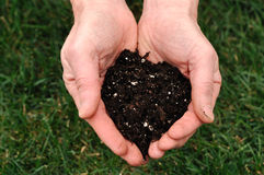 Dirt in Hands. Man holding dirt in his hands Royalty Free Stock Photos