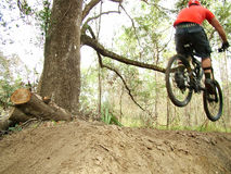 Dirt Jump. Ing at a mountain bike park in Florida Royalty Free Stock Images