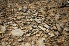 Dirt land. Texture of brown soil dirt land and some pebbles Stock Images