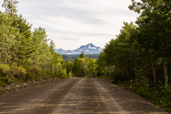 Dirt Logging Road with Distant Mountain. A dirt logging road leading through the forest towards a distant snowcapped mountain Stock Photos