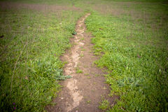 Dirt path Stock Photo