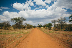 Dirt Path Through Africa Stock Photography