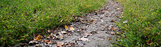 Dirt Path Banner stock image