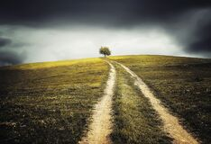 Dirt path through field Stock Photo