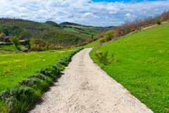 Dirt Path Stock Photography