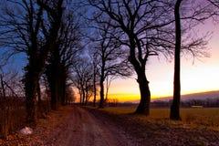 Dirt Path Sunrise Royalty Free Stock Photos