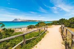 Dirt path to the sea in Sardinia Stock Image