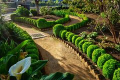 A well groomed garden of delights stock images