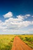 Dirt Road. In Massai Mara, Kenya Royalty Free Stock Image