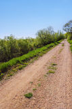 Dirt road. On a sunny day in spring Royalty Free Stock Photos