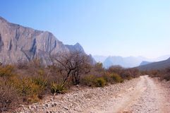 Dirt road. A dirt road going parallel by a mountain stock photos
