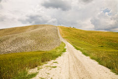 Dirt road. A dirt road surrounded by fields in Tuscany, Italy Royalty Free Stock Image