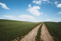 Dirt road across wheat field. Photo of Dirt road across wheat field stock image