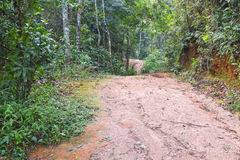 Dirt road adventure Royalty Free Stock Images