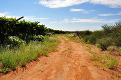 Dirt road through African farm land Stock Photo