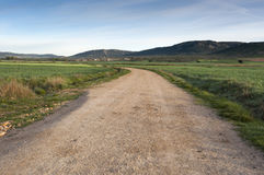 Dirt road in an agricultural landscape in La Mancha. Ciudad Real Province, Spain. In the background can be seen the Toledo Mountains Royalty Free Stock Image