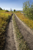 Dirt road along bank of Buffalo Fork, Jackson Hole, Wyoming. Royalty Free Stock Images