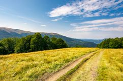 Dirt road through alpine meadow among forest. Dirt road through alpine meadow among beech forest. wonderful summer landscape. distant mountain ridge beneath a Stock Images