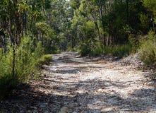 Dirt Road in Australian Bush Royalty Free Stock Photos