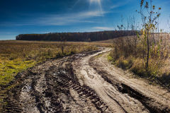 Dirt road in the autumn field Royalty Free Stock Photo