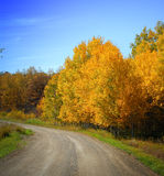 Dirt Road, Autumn Foliage, Sky Royalty Free Stock Images