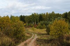 Dirt road in autumn forest. Winding dirt road through the forest, autumn day Stock Photography