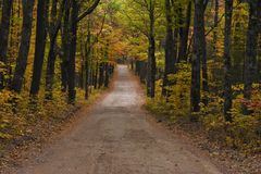Dirt road in the autumn light New England Stock Images